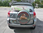 k9-professor-rav-4-back-window-with-graphic-perf