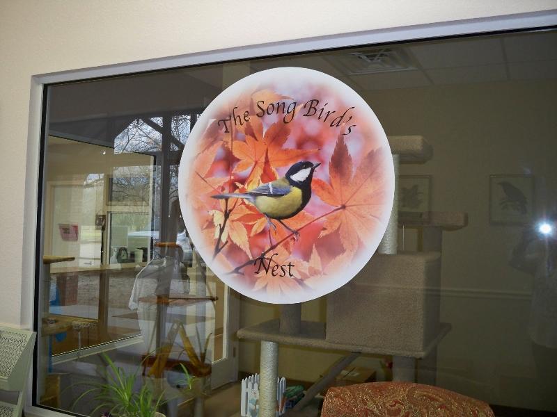 nfar-song-bird-2_0