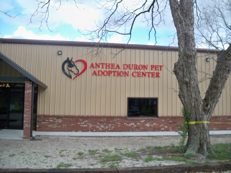nfar-adoption-center-building-sign