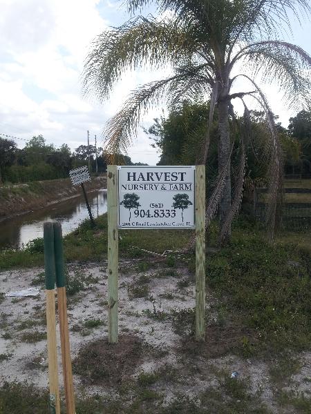 harvest-nursery-farm